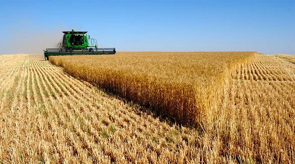 ۱۱ میلیارد ریال تسهیلات به کشاورزان بوئین زهرا پرداخت شد