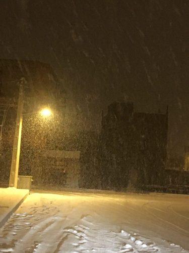 زیباترین عکس ها از شهرستان بوئین زهرا در یک روز برفی