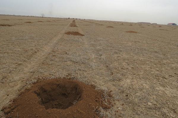 اختصاص ۷ میلیارد تومان برای اجرای طرح بیابان زدایی در ۲۶۰۰ هکتار از اراضی الله آباد