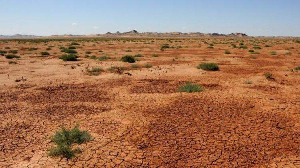 300 هکتار بیابان در بوئین زهرا برای اجرای طرح بیابانزدایی به بسیج سازندگی سپرده شد