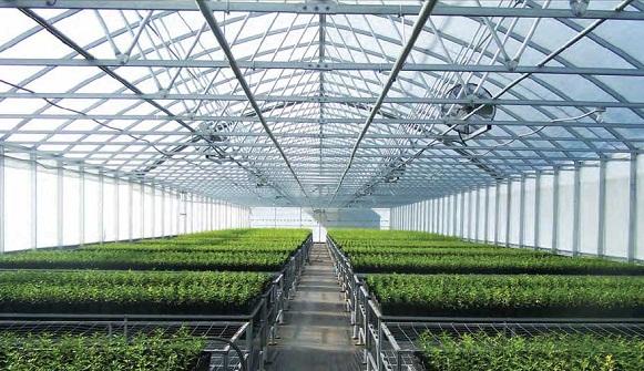 واگذاری شهرک صنعتی شال به شرکت شهرکهای کشاورزی جهت ایجاد مجتمع گلخانه ای