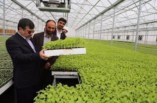 افتتاح فاز 2 گلخانه شرکت نشاءگستر در بوئین زهرا