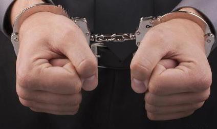 دستبند پليس بر دست سارقان 70 راس دام در سگزآباد