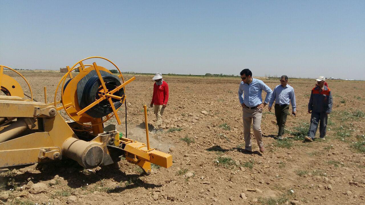 اولین طرح آبیاری زیرسطحی استان قزوین در بخش شال اجرا شد