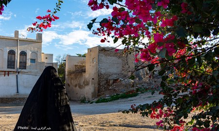 عکس/بوشهر؛ کوچههای آشتیکنان
