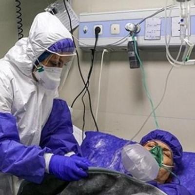 بستری ۷۷ بیمار در بخشهای کرونایی استان بوشهر
